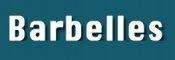 barbelles-seo-student-jpg